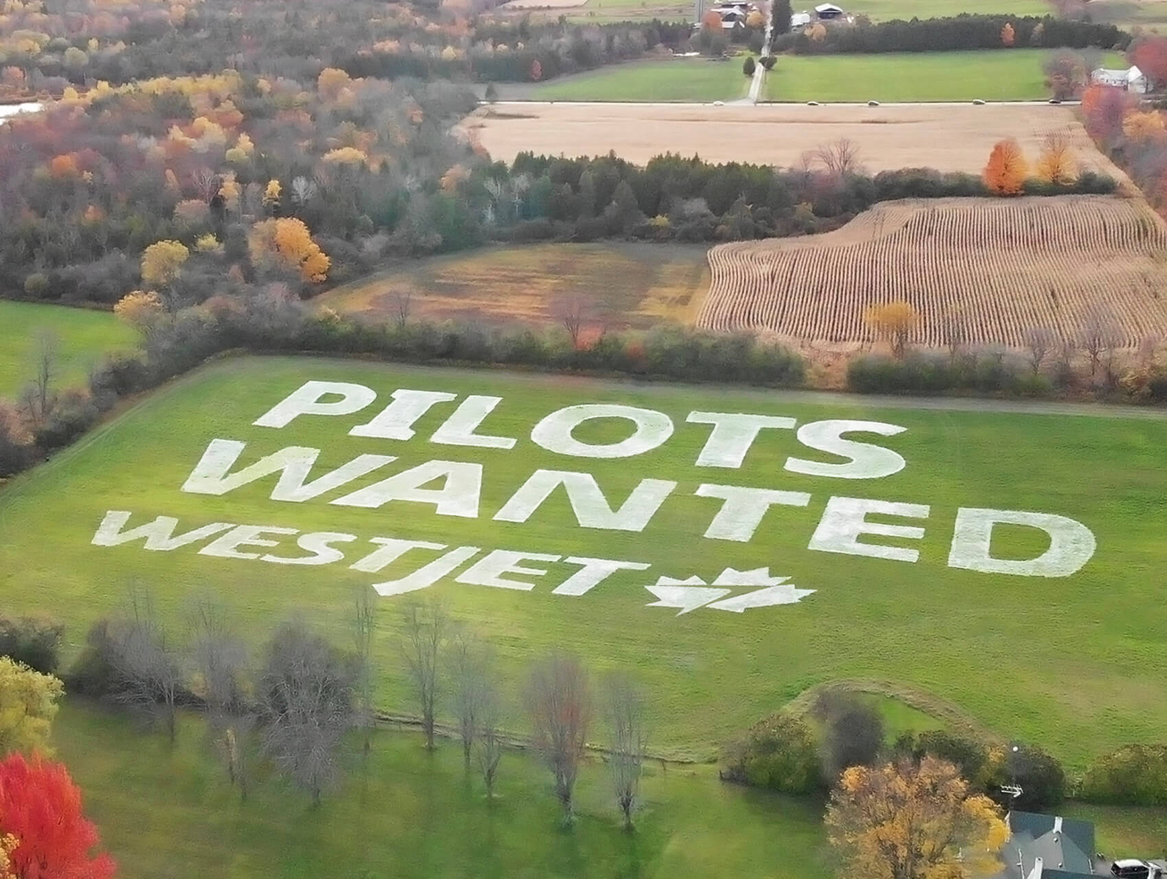 hand-painted 5 acres field mural for westjet